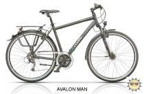 Cross Avalon - Férfi trekking kerékpár