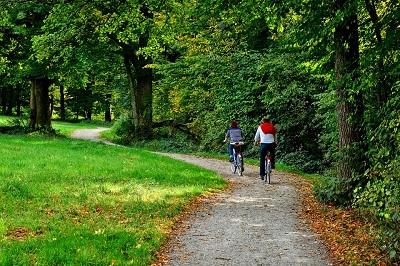 Miért jó neked, ha trekking kerékpárod van?