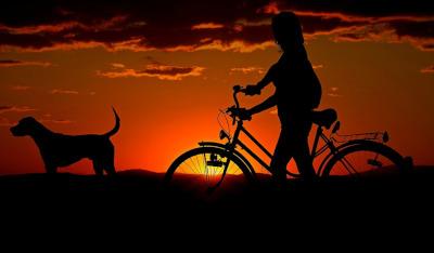 Trekking kerékpár – a legsokoldalúbb kétkerekű